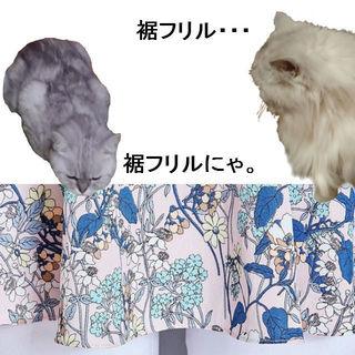 WCN-1529824739_2-tetochibi.jpg